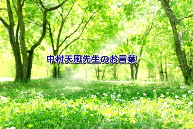 nakamura-tempu-3